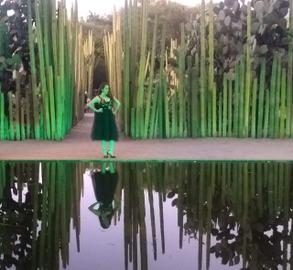 Jardín etnobotánico de Oaxaca.