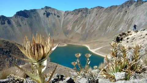 ROSA DE LAS NIEVES, NEVADO DE TOLUCA #ViajesDondeIr