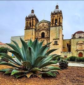 Oaxaca tierra de tradición y color
